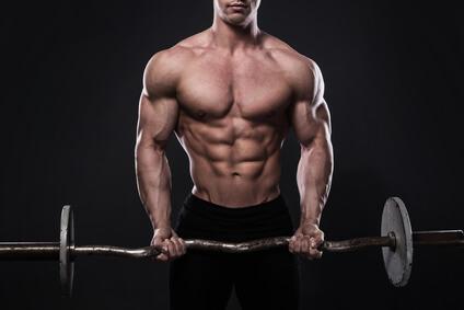 Ganzkörpertraining Muskelaufbau